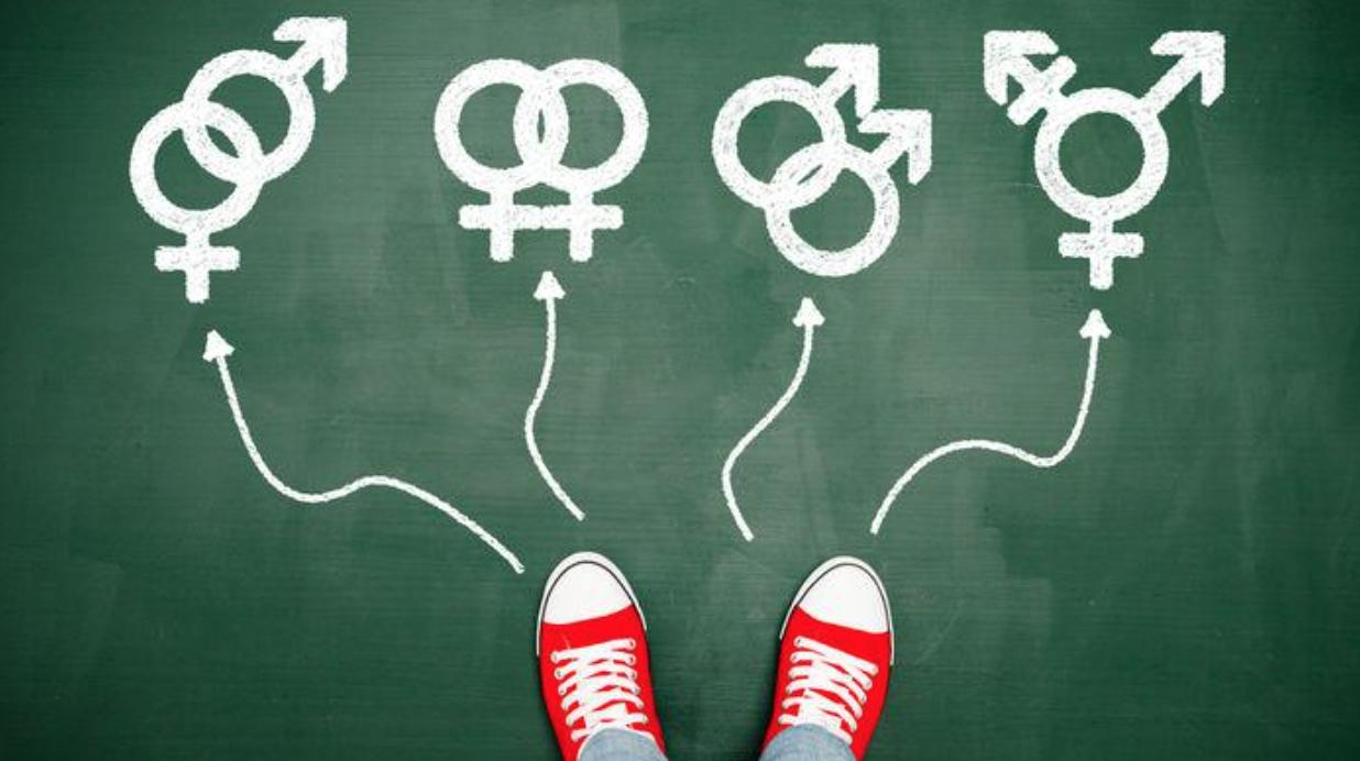 Resultado de imagem para ideologia de gênero