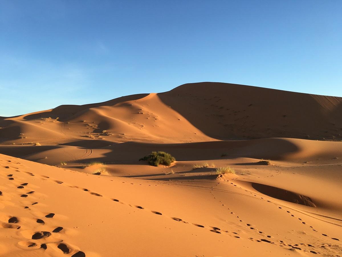 Conduzido pelo Espírito ao deserto para vencer o tentador